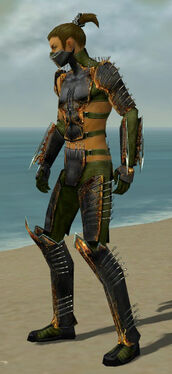 Assassin Exotic Armor M dyed side.jpg