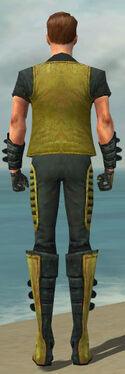 Mesmer Rogue Armor M dyed back.jpg