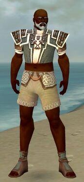 Monk Elite Judge Armor M gray chest feet front.jpg