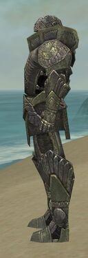 Warrior Elite Platemail Armor M gray side.jpg