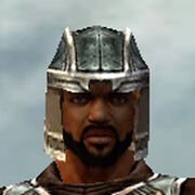 Warrior Istani Armor M gray head front.jpg