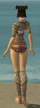 Monk Labyrinthine Armor F gray chest feet back.jpg