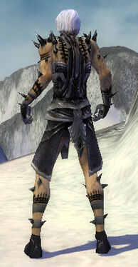 Necromancer Obsidian Armor M gray back.jpg