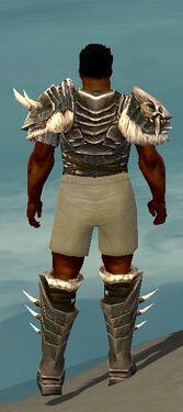 Warrior Norn Armor M gray chest feet back.jpg