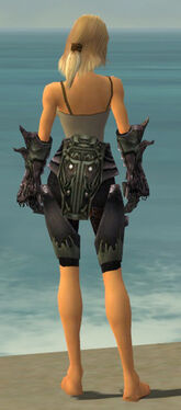Warrior Primeval Armor F gray arms legs back.jpg