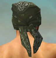 Bandana M gray back.jpg