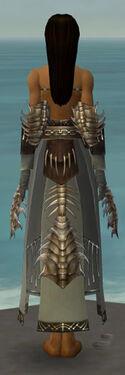 Dervish Primeval Armor F gray arms legs back.jpg