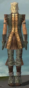 Elementalist Istani Armor M gray back.jpg