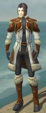 Elementalist Norn Armor M dyed front.jpg