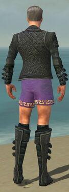 Mesmer Elite Rogue Armor M gray chest feet back.jpg