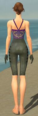 Mesmer Rogue Armor F gray arms legs back.jpg