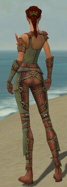 Ranger Ascalon Armor F gray back.jpg