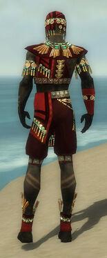 Ritualist Elite Luxon Armor M dyed back.jpg