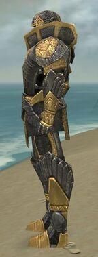 Warrior Elite Platemail Armor M dyed side.jpg