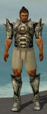 Warrior Elite Sunspear Armor M gray chest feet front.jpg