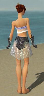 Elementalist Stormforged Armor F gray arms legs back.jpg