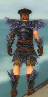 Warrior Luxon Armor M dyed back.jpg