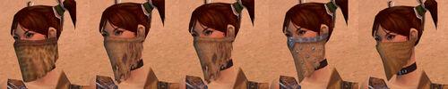 Armor R Tyrian F Undye Mask.jpg