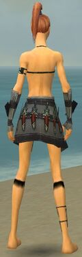 Assassin Elite Canthan Armor F gray arms legs back.jpg