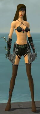 Assassin Elite Luxon Armor F gray arms legs front.jpg