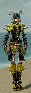Necromancer Elite Luxon Armor F dyed back.jpg