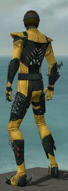 Assassin Seitung Armor M dyed back.jpg