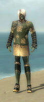 Mesmer Elite Canthan Armor M gray front.jpg