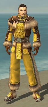 Monk Norn Armor M dyed front.jpg