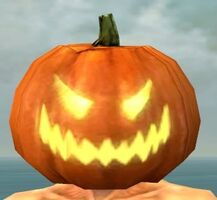Pumpkin Crown gray front.jpg