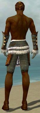 Ranger Canthan Armor M gray arms legs back.jpg