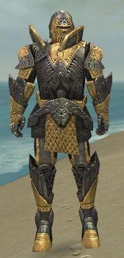 Warrior Elite Platemail Armor M dyed front.jpg