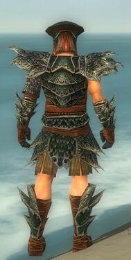 Warrior Luxon Armor M gray back.jpg