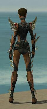Assassin Elite Imperial Armor F dyed back.jpg