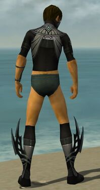 Assassin Vabbian Armor M gray chest feet back.jpg