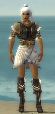 Elementalist Elite Sunspear Armor M gray chest feet front.jpg
