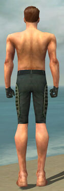 Mesmer Rogue Armor M gray arms legs back.jpg