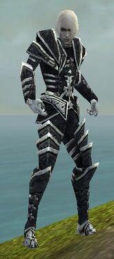 Necromancer Elite Cultist Armor M dyed front.jpg