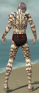 Necromancer Elite Scar Pattern Armor M gray back.jpg