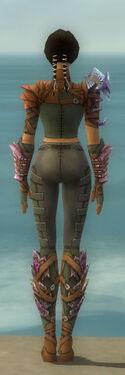 Ranger Drakescale Armor F gray back.jpg