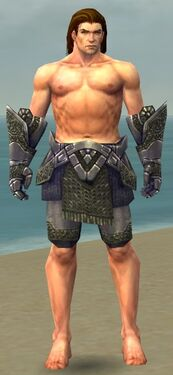 Warrior Platemail Armor M gray arms legs front.jpg