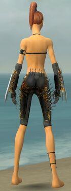 Assassin Exotic Armor F gray arms legs back.jpg