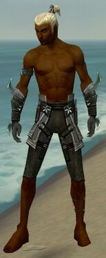 Assassin Luxon Armor M gray arms legs front.jpg