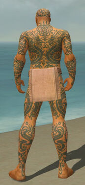 Monk Dragon Armor M gray back.jpg
