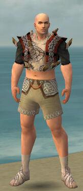 Monk Primeval Armor M gray chest feet front.jpg