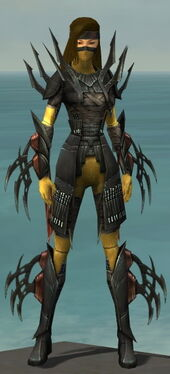Assassin Ancient Armor F dyed front.jpg