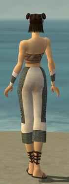 Monk Elite Saintly Armor F gray arms legs back.jpg