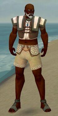 Monk Elite Woven Armor M gray chest feet front.jpg