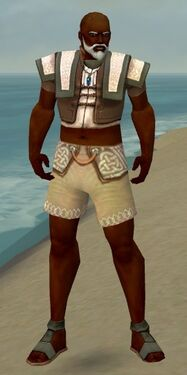 Monk Elite Woven Armor M gray chest feet front.jpg