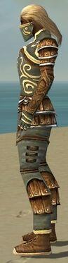 Ranger Shing Jea Armor M gray side.jpg