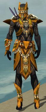 Ritualist Elite Kurzick Armor M dyed front.jpg